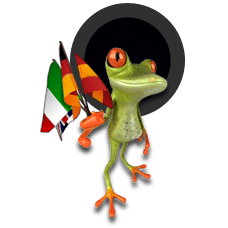 frog_referencement_international