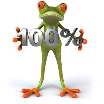 Frog-garantie-google