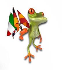 grenouille-referencement-international